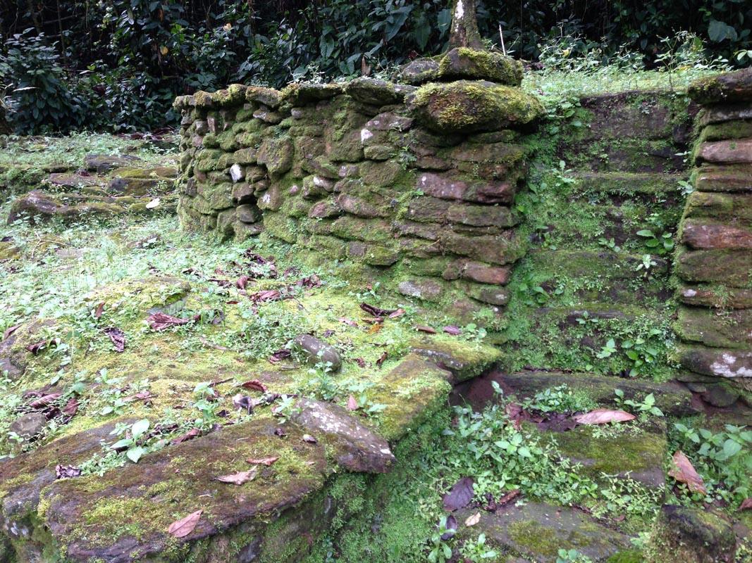 CP lichen stair