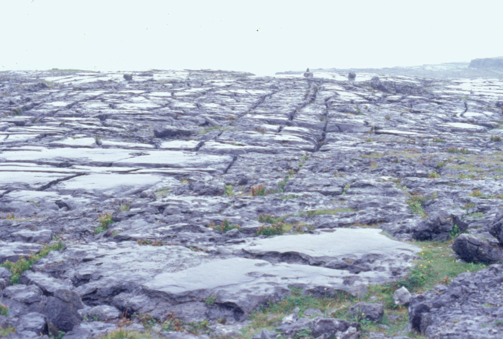 burren pavements