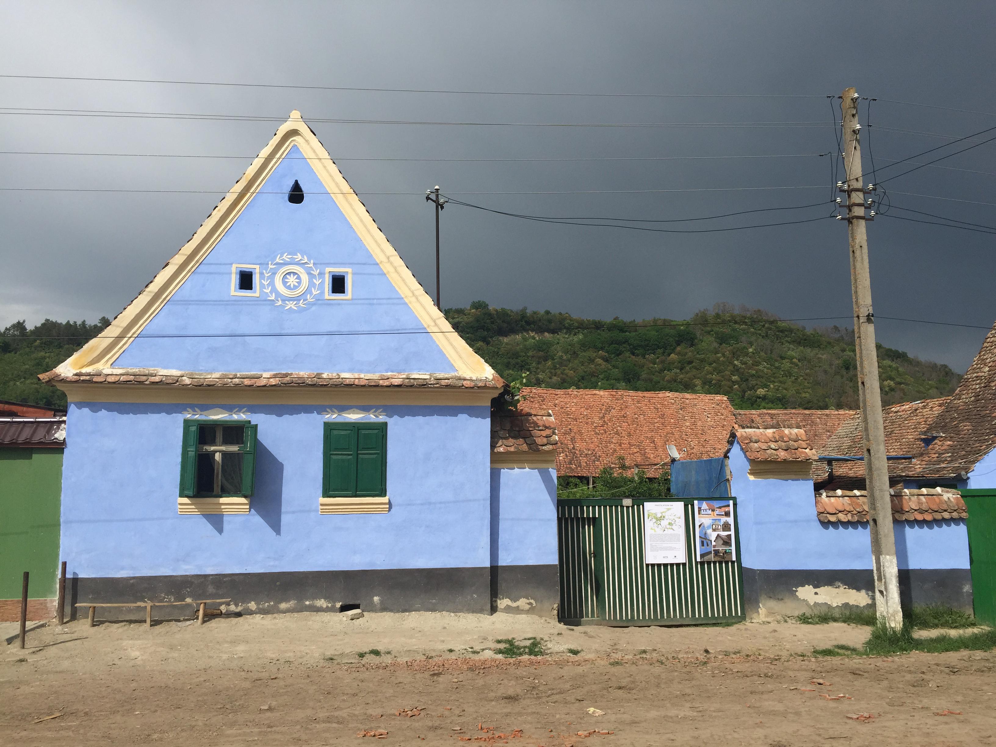 daia blue 2 view