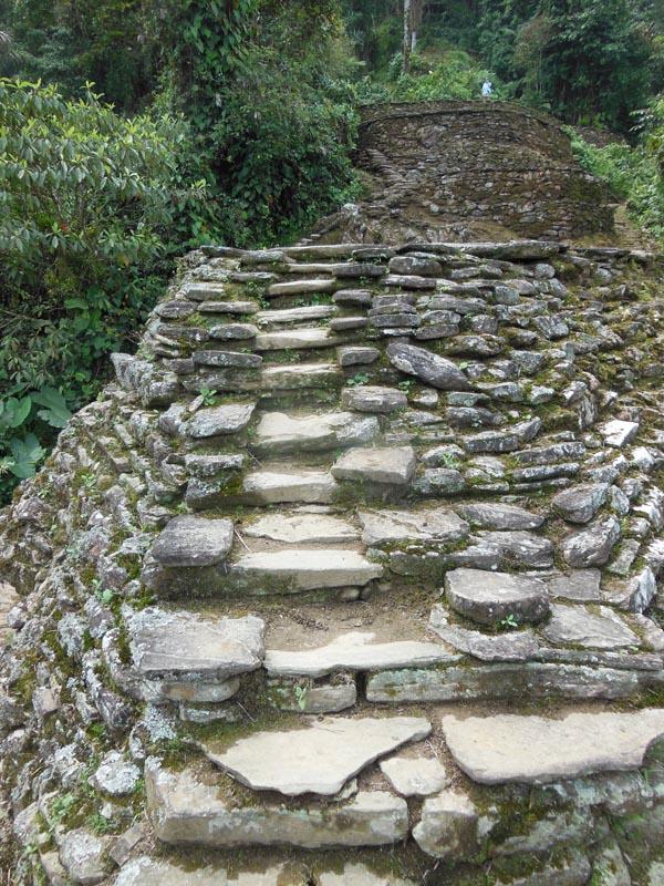CP 64 stairs main