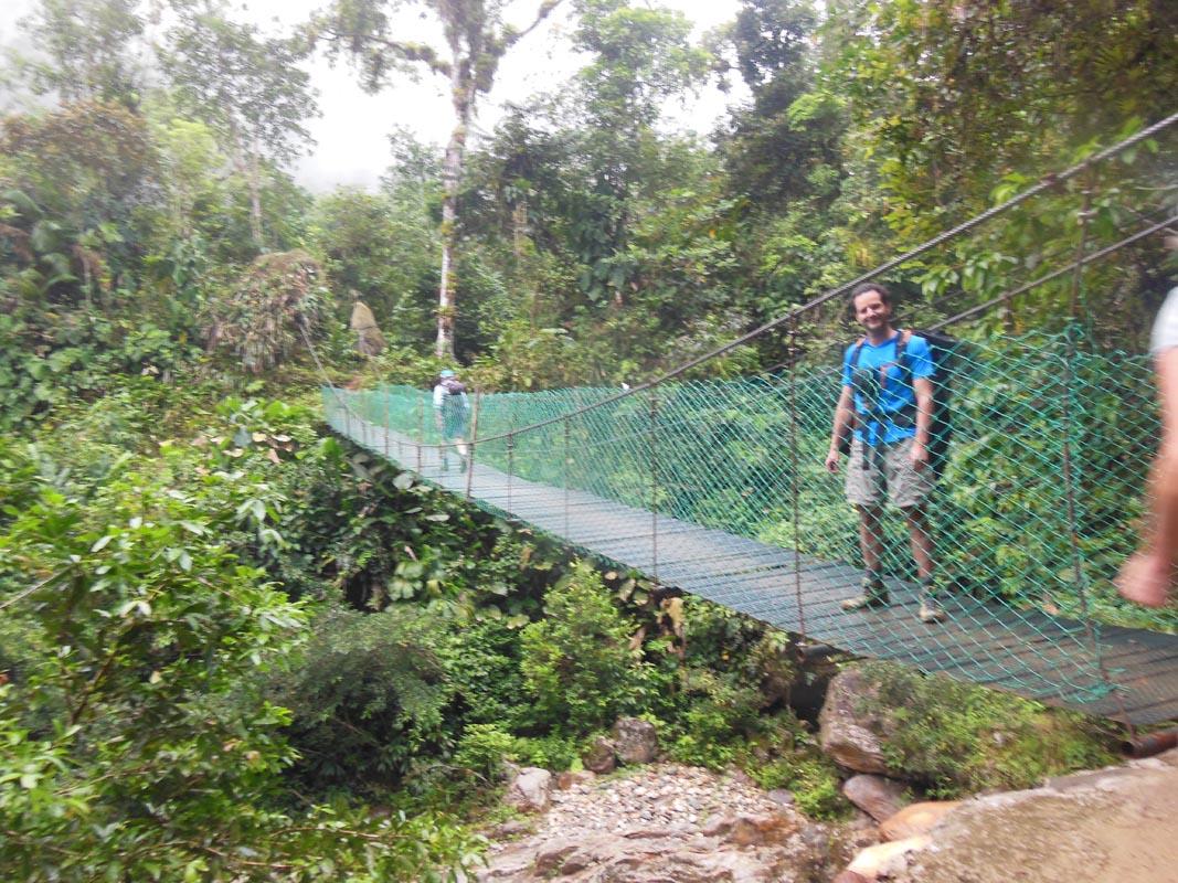 Trail 29 bridge