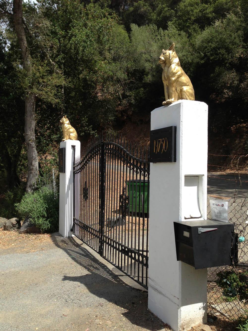 los gatos reserv roadS
