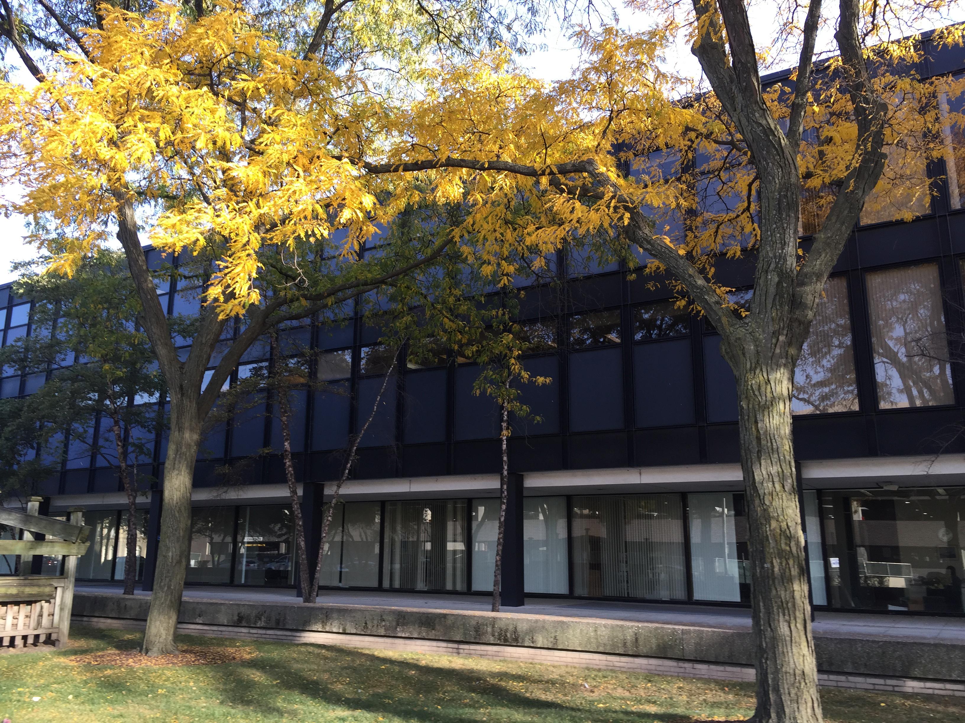 Malcolm X C facade trees2